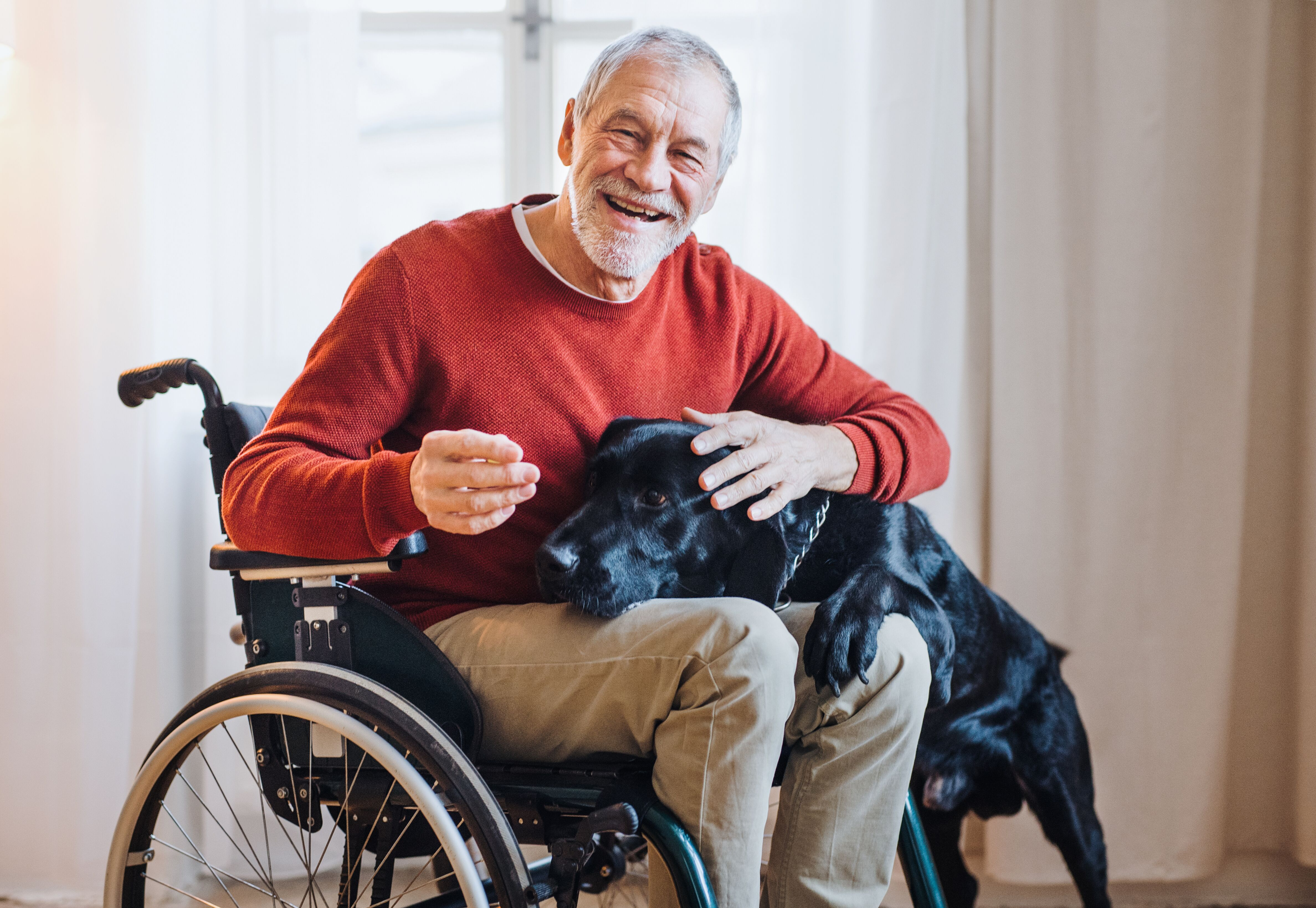 ALS and Neuromuscular Diseases - American Brain Foundation